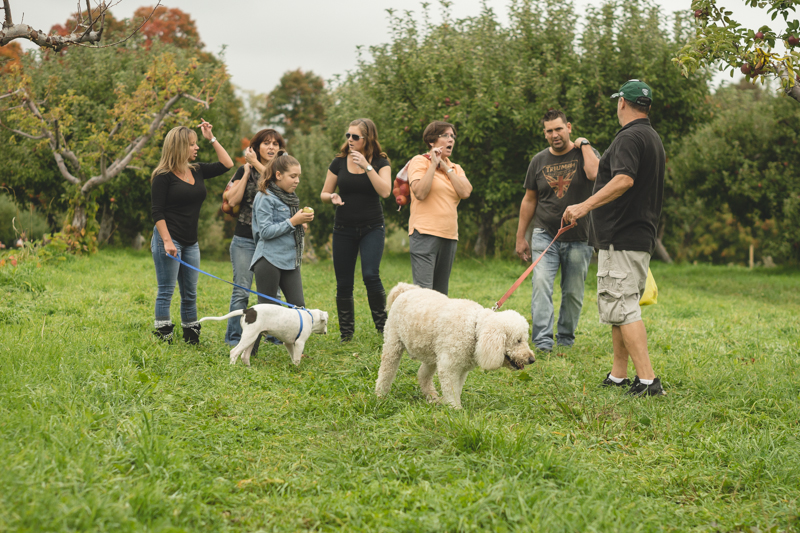 fishkill farms apple picking (13)