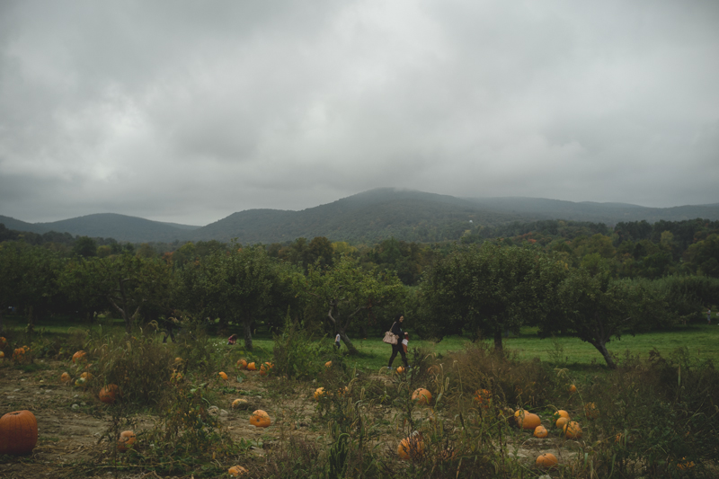 fishkill farms apple picking (1)
