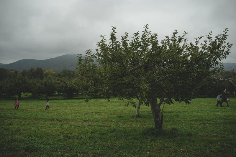 fishkill farms apple picking (2)